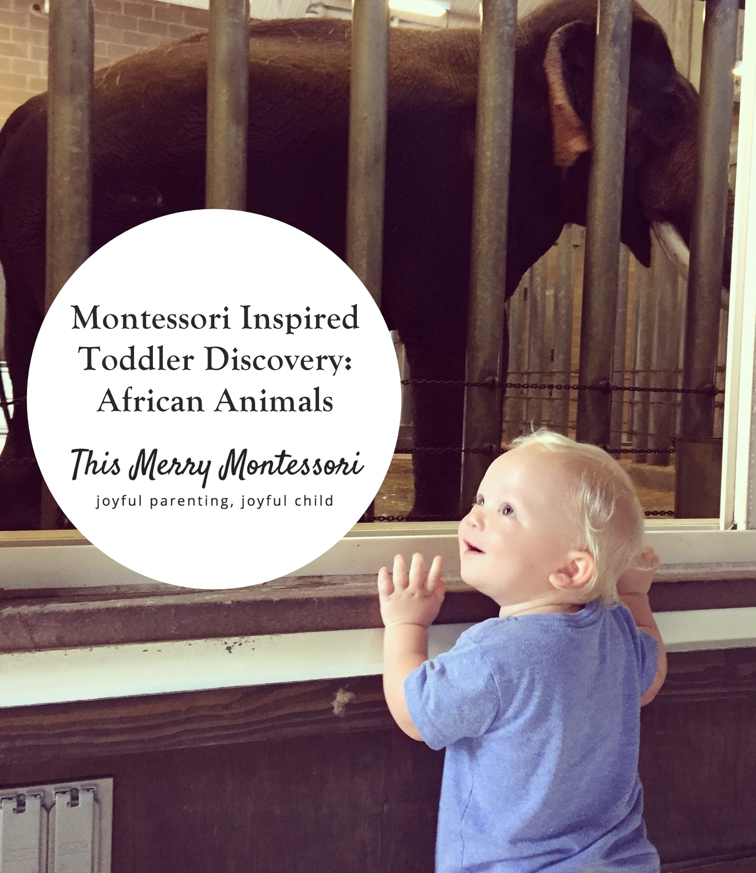 Montessori Inspired Toddler Discovery African Animals 2--TMM