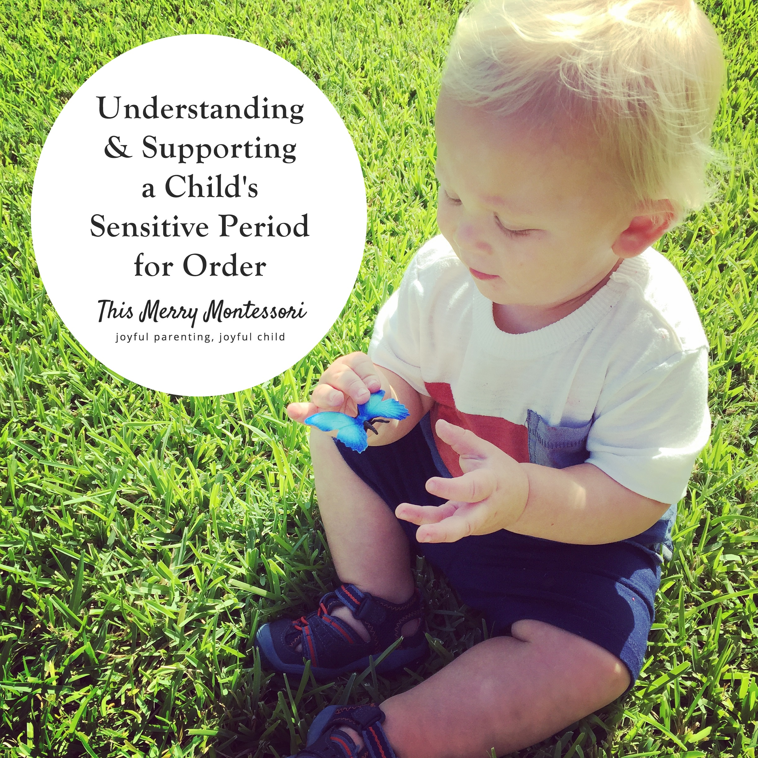 Understanding and Supporting a Child's Sensitive Period For Order--This Merry Montessori