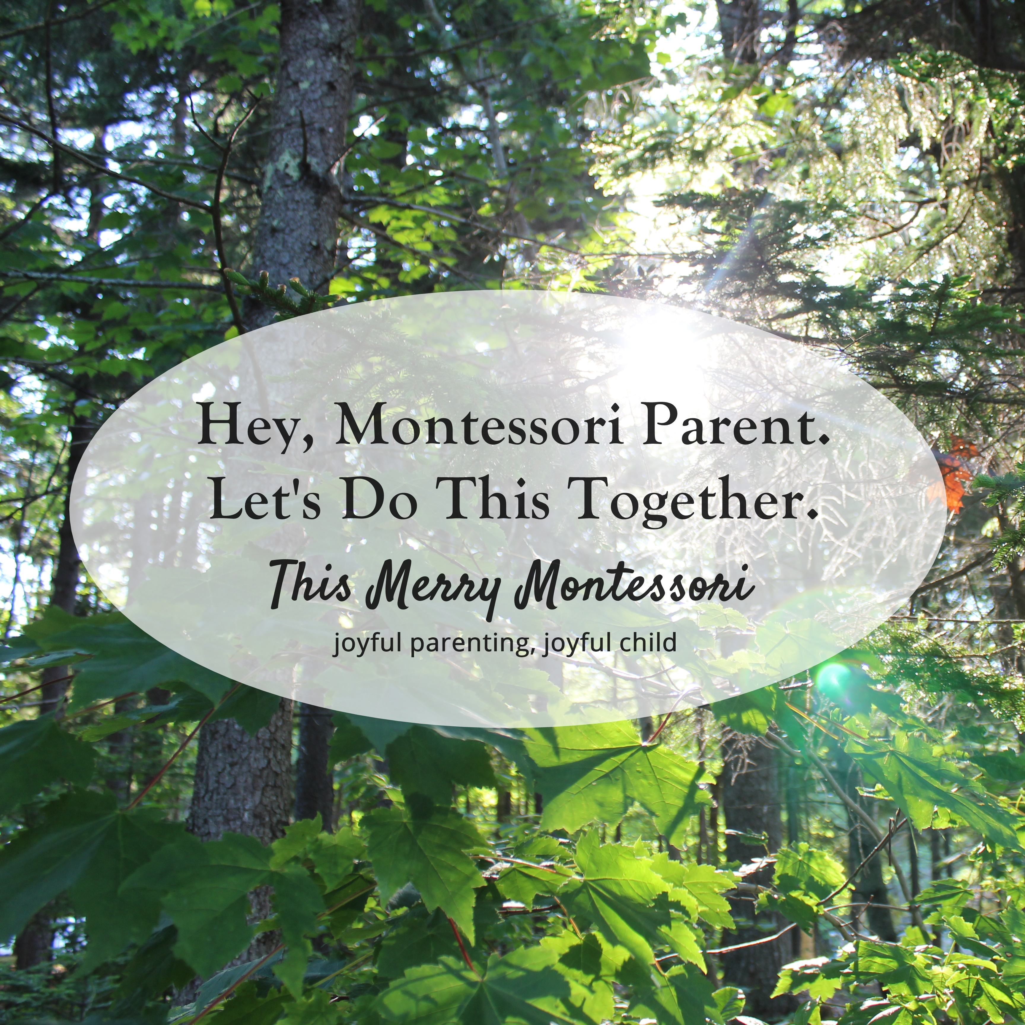 Let's Do This Together--This Merry Montessori